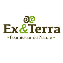 Aménagement extérieur Orchies - Ex&Terra